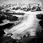 Columbia Glacier, Terentiev Lake, Calving Terminus and Distributaries, August 24, 1964 (GLACIERS 1065).jpg