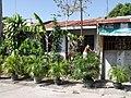 Convenient store in San Rafael, Bulacan, Philippines - panoramio.jpg