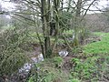 Conygre Brook, near Priston Mill - geograph.org.uk - 698261.jpg