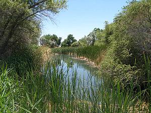 Desert National Wildlife Refuge - Corn Creek Springs at Desert National Wildlife Refuge