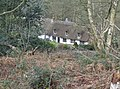 Cottages at Scotland in Chapel Row Common - geograph.org.uk - 350270.jpg