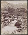 Cous du Kadisha, Monte Libon MET DP113878.jpg