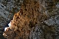 Cova dels Arcs, forat del sostre.JPG