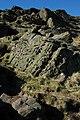 Crags on Shutlingsloe - geograph.org.uk - 696792.jpg