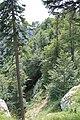 Creux du Van - panoramio (18).jpg