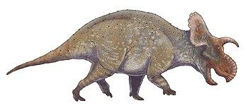 Crittendenceratops shaded.jpg