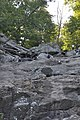 Cunningham Falls State Park - hand-stand - 2.JPG