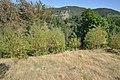 Dacian Fortress of Capalna 008.jpg
