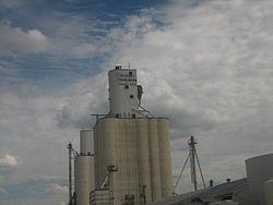 Dalhart Grain Elevator IMG 0568.JPG