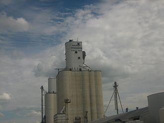 Dalhart, Texas - Dalhart Consumers grain elevator, 2008