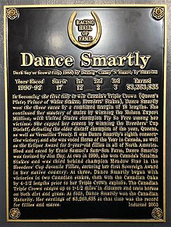 Dance Smartly Canadian-bred Thoroughbred racehorse