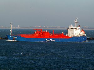 Danubegas IMO 9176125 leaving Port of Rotterdam, Holland 29-Jan-2006.jpg