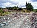 Debris on the road from clear fell in the Eskdalemuir Forest - geograph.org.uk - 518415.jpg