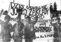 DemonstracjaPPSRD.png