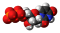 Deoxyuridine diphosphate anion 3D spacefill.png