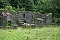 Derelict Cottages - geograph.org.uk - 882018.jpg