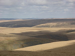 Moorland - Extensive moorland in the Desert of Wales