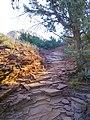 Devil's Bridge Trail, Sedona, Arizona - panoramio (4).jpg