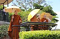 Dhammagiri Forest Hermitage monks visiting Mt Cootha lookout, Brisbane, Australia.jpg
