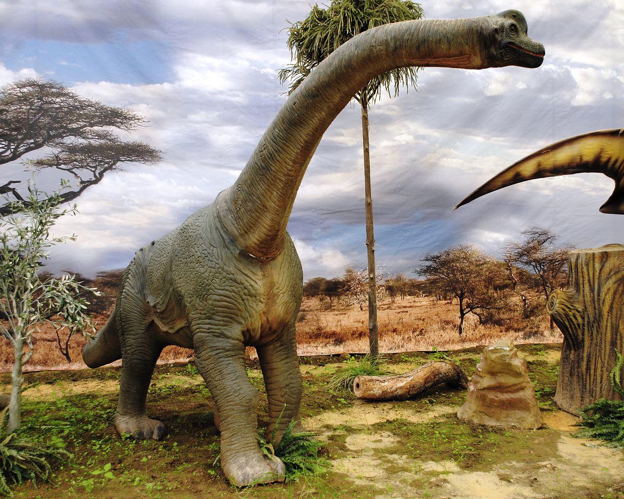 File Dinosaurios Park Brachiosaurus Young Jpg Wikimedia