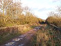 Disused railway viaduct, Marton Moor (1) - geograph.org.uk - 1131525.jpg