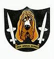 Divisionsmärke F 10 robotdivisionen.jpg