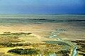 Doñana 1986 06.jpg