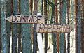 Dominice w gm. Wloszakowice (4).JPG