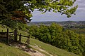 Dorking from Denbies Hillside - geograph.org.uk - 1290186.jpg