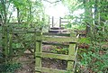 Double kissing gates on the North Downs Way - geograph.org.uk - 940820.jpg