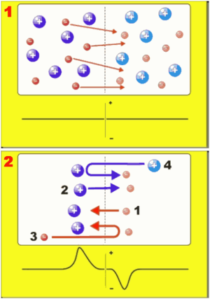 Double layer (plasma physics) - Double layer formation. Formation of a double layer requires electrons to move between two adjacent regions (Diagram 1, top) causing a charge separation. An electrostatic potential imbalance may result (Diagram 2, bottom)