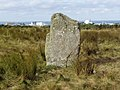Dounreay Standing Stone with reactor behind - geograph.org.uk - 914993.jpg