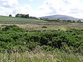 Drumnaheigh Townland - geograph.org.uk - 862008.jpg