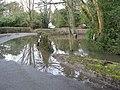Duck Pond spilling onto the adjacent road, Burstow, Surrey - geograph.org.uk - 1728157.jpg