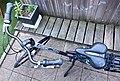 Dutch Gazelle viewed from above.jpg