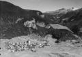 ETH-BIB-Alvaneu, Blick nach Nordost, Davos-LBS H1-018121.tif