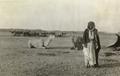 ETH-BIB-Kamelkarawane bei Chanikin -Chanaqin--Persienflug 1924-1925-LBS MH02-02-0045-AL-FL.tif