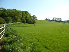 East Hampshire countryside south of Owslebury - geograph.org.uk - 791271.jpg