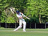 Eastons CC v. Chappel and Wakes Colne CC at Little Easton, Essex, England 05.jpg
