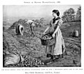 Edith Martineau - Potato Harvest 1888.jpg