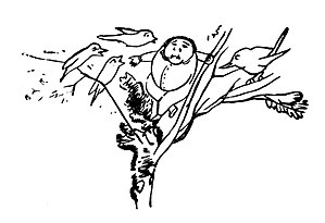 Edward Lear A Book of Nonsense 66.jpg