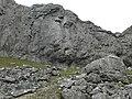 Eglwyseg Rocks - geograph.org.uk - 756596.jpg