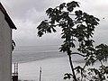 El Pacifico desde la Sierra del Tigre - panoramio.jpg