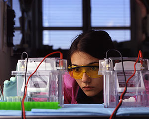 Electrophoresis equipment.jpg