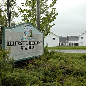 Ellerslie-Bideford, Prince Edward Island - Ellerslie Shellfish Station and Shellfish Museum. Situated on an arm of Malpeque Bay, it is a centre of the famed Malpeque Oyster industry.