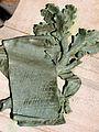 Embrun - Monument à Clovis Hugues -740.jpg