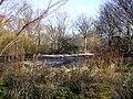 Empty lake in St James's Park - geograph.org.uk - 1178972.jpg