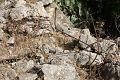 Emwas Ruins שרידי בית הרוס בכפר עמואס.jpg