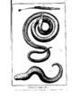 Encyclopedie volume 5-109.png