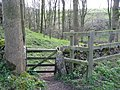 Entrance to Rusden Wood off Weaddow Lane - geograph.org.uk - 1239683.jpg